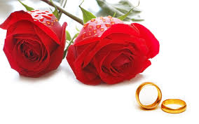 valentines day roses 14 s day roses picture hd wallpapers