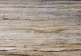 weathered wood weathered wood texture randen pederson flickr