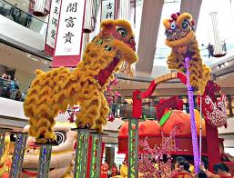 lion dancer book hong kong new year lion