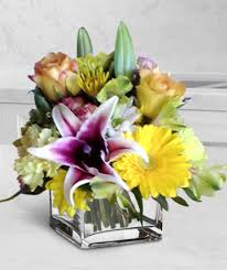 florist express apology flowers i m sorry peace offering flowers rock ar