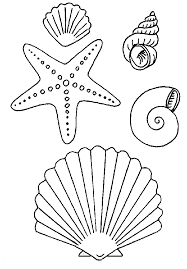 shell coloring pages oceans water shell