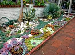 Rocks In Garden Design Succulent Garden Designs Succulent Garden Designs Cactus