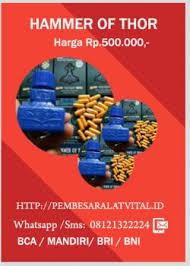 pembesar alat vital obat hammer of thor asli import