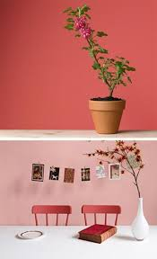 65 best corail images on pinterest blog designs coral and gray