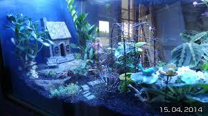 large nursery layout modern garden design raised bed x slate and