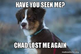 Lost Dog Meme - have you seen me chad lost me again unsure dog make a meme