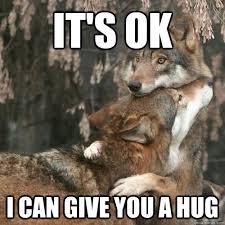 Give Me A Hug Meme - it s ok i can give you a hug comfort wolf quickmeme