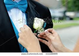 Turquoise Corsage Corsage Stock Images Royalty Free Images U0026 Vectors Shutterstock