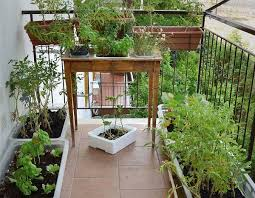 the 25 best balcony herb gardens ideas on pinterest herb garden
