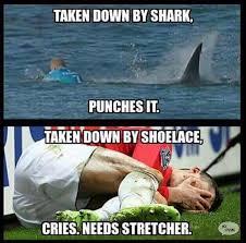 Funny Shark Meme - mick fanning shark attack memes