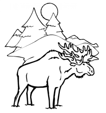 colouring pages of winter animals winter animals coloring page