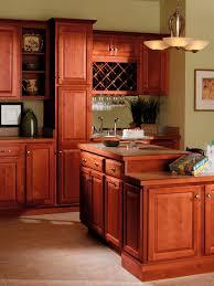 cinnamon shaker kitchen cabinets cinnamon kitchen cabinet ideas u2013 quicua com