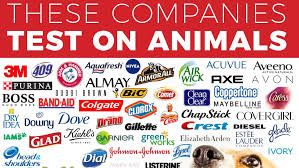 Know Your Meme Com - these companies test on animals know your meme