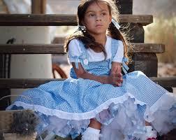 Dorothy Toto Halloween Costume Dorothy Dress Etsy