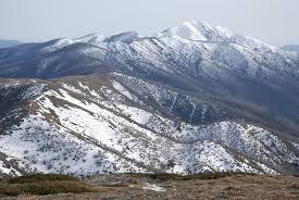 Mount Lindesay Highway Wikipedia Australian Alps Wikipedia