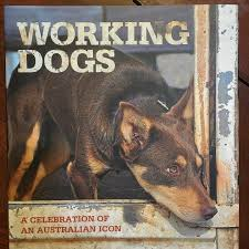 dog coffee table books working dogs photographic coffee table book spinifexcollections