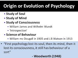 Case study psychology introduction essays