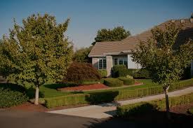 fence line u0026 driveways u2014 glass tree care u0026 spray service inc