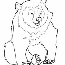 moon bear coloring page free printable coloring pages moon bear