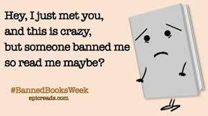 Books Meme - i read banned books jillian c york