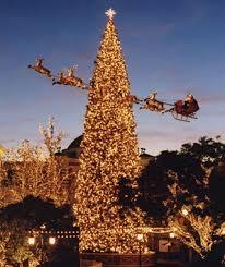most popular christmas tree lights america s tallest christmas trees travel leisure