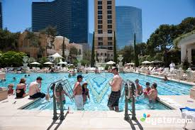 pool at the bellagio oyster com hotel reviews and photos