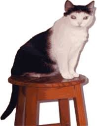 Cat Under Chair Cat Under The Chair Clipart Clipartsgram Com