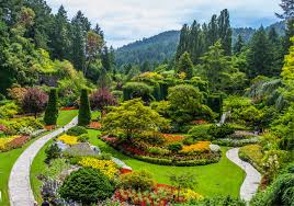 Nice Flower Picture - most beautiful flower gardens in canada butchart gardens garden