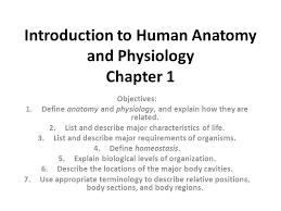 Human Anatomy And Physiology 8th Edition Introduction To Human Anatomy And Physiology Chapter 1 Ppt Video