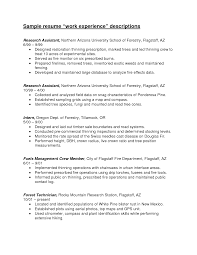 Resume Work Experience Examples For Customer Service by Experience Resume Work Experience Examples
