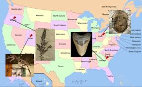 Ice Age Map North America by List Of State Fossils Fossilera Com