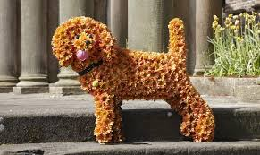 dog flower arrangement bespoke dog arrangement the flower story whetstone london