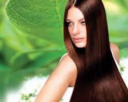 trendy hair salons in allen texas hair color studios hair services hilite grey coverage