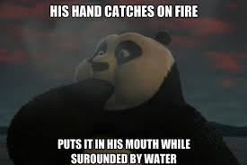 Fu Memes - kung fu panda 2 logic www meme lol com other that i love