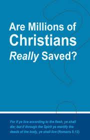 aneko press christian books our readers matter