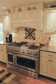 Luxor Kitchen Cabinets 67 Best Kitchens Images On Pinterest Home Dream Kitchens And