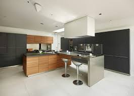 functional kitchen cabinets functional kitchen cabinet houzz