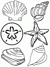 seashell coloring page online for kid 9740