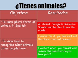 me presento spanish introductions worksheet by ave maría