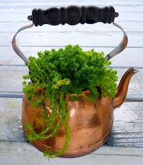 an old copper tea pot if you use metal containers for plants