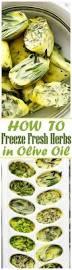 freeze u0026 preserve fresh herbs in olive oil u2014 tips from the ice