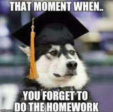 Husky Meme - educated husky latest memes imgflip
