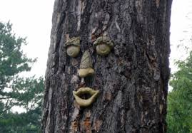 tree face forest faces decorative tree faces yard products outdoor