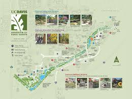 davis map arboretum visitor map uc davis arboretum garden