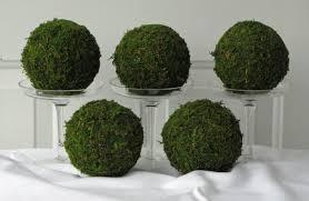 moss pomander balls set of 5 4 inch moss balls for home or