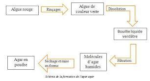 cuisine chimie iii la chimie base de la cuisine moléculaire