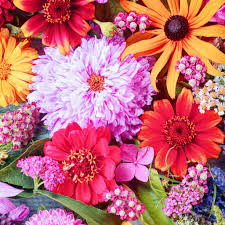 colorful summer flowers jigsaw puzzle in flowers puzzles on