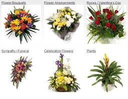 Send Flower Gifts - send flowers and gifts to canada flower delivery canada