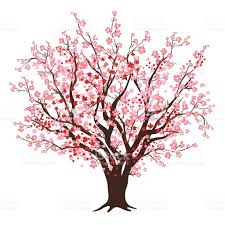 pink and cherry blossom tree in bloom stock vector