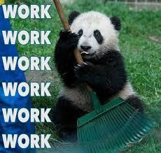 Funny Panda Memes - best 25 panda meme ideas on pinterest funny moving pictures